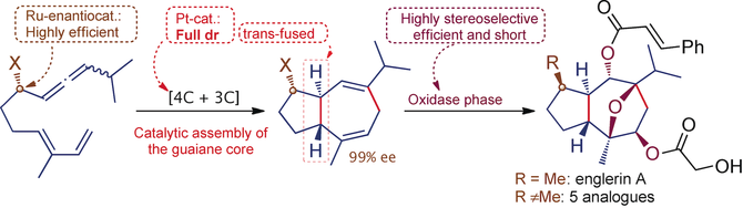 27) Concise, Enantioselective, and Versatile Synthesis of (-)-Englerin A. Based on a Platinum-Catalyzed [4C+3C] Cycloaddition of Allenedienes