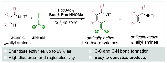 39) Kinetic Resolution of Allyltriflamides through a Pd-Catalyzed C–H Functionalization with Allenes: Asymmetric Assembly of Tetrahydropyridines